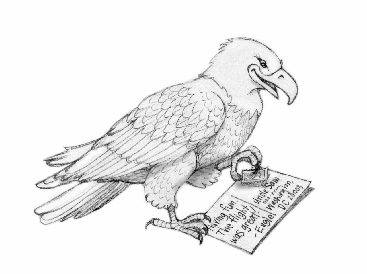 soaring eagle drawing soaring eagle sketch illustration